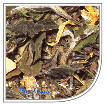 Exotic Fruit White tea Organic